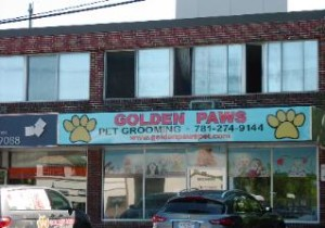 goldenPaws